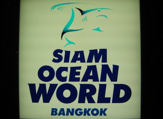 Bangkok – Siam Ocean World
