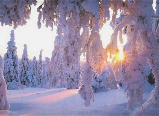 Canada Paysage – Hiver